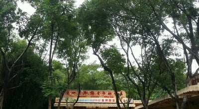 Photo of Park Chimelong Safari Park 长隆野生动物世界 at China