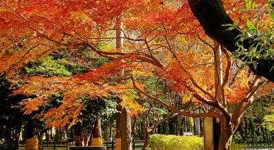 Photo of Monument / Landmark 相模原市慰霊塔 at 南区東大沼, 相模原市 252-0333, Japan