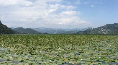Photo of National Park Nacionalni Park Skadarsko Jezero at Gostilj, Podgorica, Montenegro
