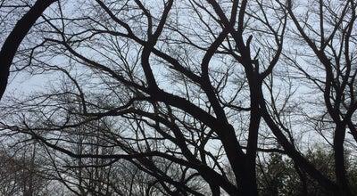 Photo of Park 八幡公園 at 粕壁, 春日部市 344-0061, Japan