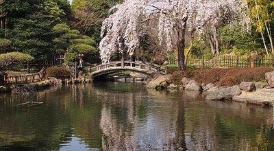 Photo of Park 平塚市総合公園 at 大原1-1, 平塚市 254-0074, Japan