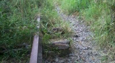 Photo of Trail Trilho's at Brazil