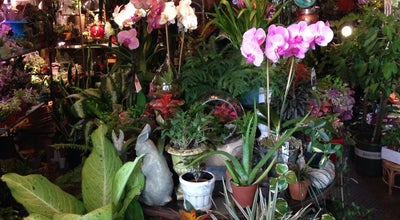 Photo of Flower Shop Dig at 479 Atlantic Ave, Brooklyn, NY 11217, United States