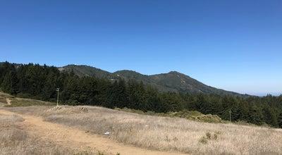 Photo of Monument / Landmark Muir Woods - Kent Tree at Fern Creek Trail, Southwest Marin, CA 94941, United States
