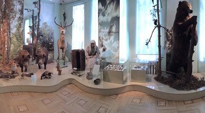 Photo of History Museum Тамбовский областной краеведческий музей at Ул. Державинская, 3, Тамбов 392000, Russia