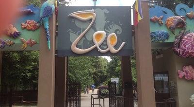 Photo of Zoo Grădina Zoologică at Str. Vadul Moldovei Nr. 4, București, Romania
