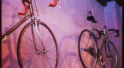 Photo of Bike Shop Radlager Palazzo at Operngasse 28, Wien 1040, Austria
