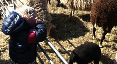 Photo of Park Kinderboerderij Merenwijk at Parkzicht 100, Leiden, Netherlands