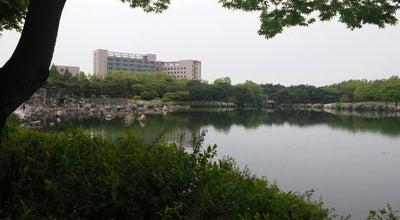 Photo of Lake Lake Park at 장항동 440-69, 고양시 410-831, South Korea