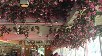 Photo of Breakfast Spot Star Restaurant at 1700 Novato Blvd, Novato, CA 94947, United States