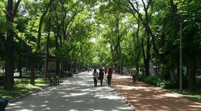 Photo of Park Krtuluş Parkı at Ankara Kurtuluş, Turkey
