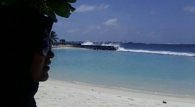 Photo of Beach Artificial Beach Bench at Maldives