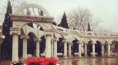 Photo of Park 睦南道花园 at 和平区睦南道, Tianjin, Ti, China