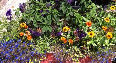 Photo of Garden Center La Crescenta Nursery at 3654 La Crescenta Ave, Glendale, CA 91208, United States