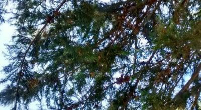 Photo of Park Parque Quebrada Verde at Chile