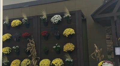 Photo of American Restaurant Harvest Seasonal Grill & Wine Bar at 400 Nj Route 38, Moorestown, NJ 08057, United States