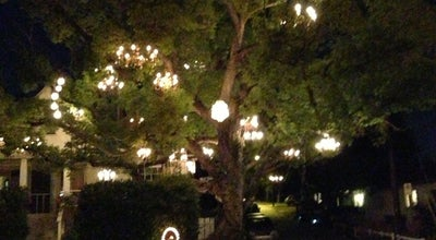 Photo of Other Great Outdoors Chandelier Tree at 2811 W Silver Lake Dr, Los Angeles, CA 90039, United States