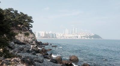 Photo of Trail 동백섬 해변산책로 at 해운대구 동백로, Busan 48100, South Korea