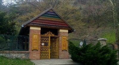 Photo of Park Pintér-kert Arborétum at Tettye Tér 9., Pécs 7625, Hungary