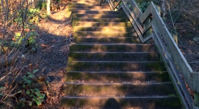 Photo of Trail Whatcom Falls Stairs at United States