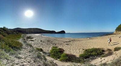 Photo of Beach Maitland Bay at Australia