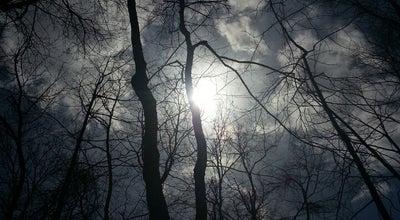Photo of Trail Nature Trail at Staten Island, NY 10314, United States