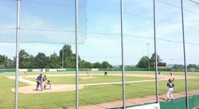Photo of Baseball Field Baseballfield Stuttgart Reds at Am Schnarrenberg 1, Stuttgart 70376, Germany