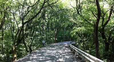 Photo of Park 足羽山公園 at 山奥町58-97, 福井市 918-8009, Japan