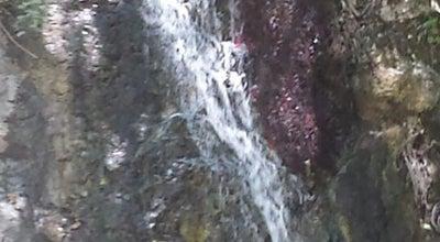 Photo of Trail Monrovia Canyon Trail at Monrovia, CA, United States