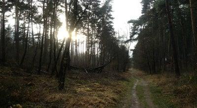 Photo of Trail Nationaal Park Hoge Kempen - Toegangspoort Mechelse Heide at Jozef Smeetslaan 280, Maasmechelen 3630, Belgium