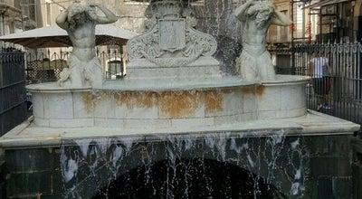 Photo of Historic Site Fontana dell'Amenano at Piazza Duomo, Catania 95124, Italy