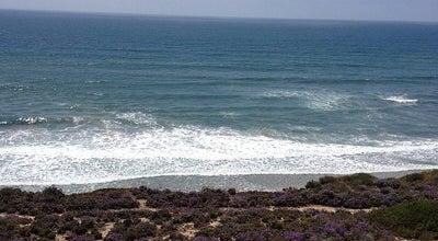 Photo of Beach Ocean Beach at Abbot St, San Diego, CA 92107, United States
