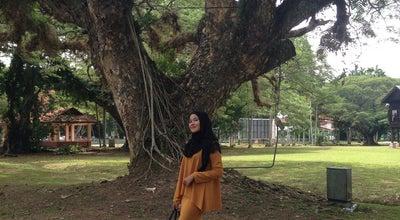 Photo of Park Taman Rimba Park at Jalan Menteri, Alor Setar 05250, Malaysia