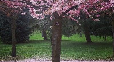 Photo of Park Parco Bassetti at Via Padre Igino Lega, 8, Gallarate 21013, Italy