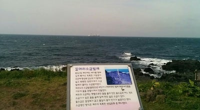 Photo of Seafood Restaurant 용출횟집 at 용담로5길 25 660, 제주시, South Korea