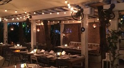 Photo of Greek Restaurant Mandolin at Collins Avenue, Miami Beach, FL, United States