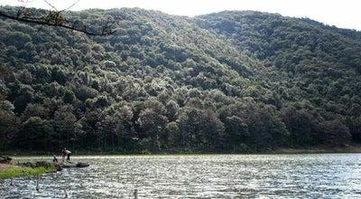 Photo of Lake Presa De Peralillo at Mexico