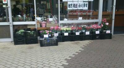 Photo of Farmers Market JA土浦 農産物直売所 さんふれ つくば店 at 研究学園5-19, つくば市 305-0817, Japan