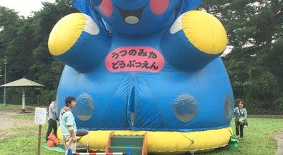 Photo of Playground アドベンチャーU at 塙田5-2-70, Utsunomiya 320-0027, Japan