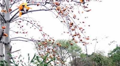 Photo of Park 巴克禮公園 | Barclay Memorial Park at 中華東路, Tainan, Taiwan