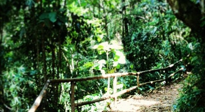 Photo of Park Parque Natural de Petrópolis at Av. Ipiranga, 853, Petrópolis 25610-150, Brazil