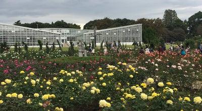 Photo of Botanical Garden 神代植物公園 バラ園 at 深大寺元町5-31-10, 調布市 182-0017, Japan