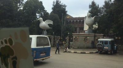 Photo of History Museum Lucy Museum at Ethiopia