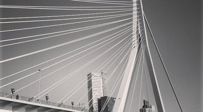 Photo of Bridge Erasmusbrug at Erasmusbrug, Rotterdam, Netherlands
