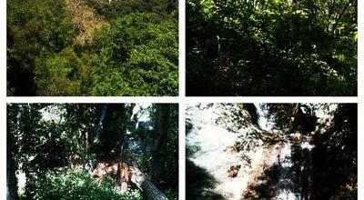 Photo of Trail Monrovia Canyon Park at 1200 N Canyon Blvd, Monrovia, CA 91016, United States