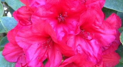 Photo of Botanical Garden Bellevue Botanical Garden at 12001 Main St, Bellevue, WA 98005, United States