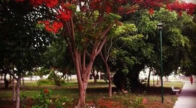 Photo of Park Jardín Yukon at Av. Constitución, Colima 28017, Mexico