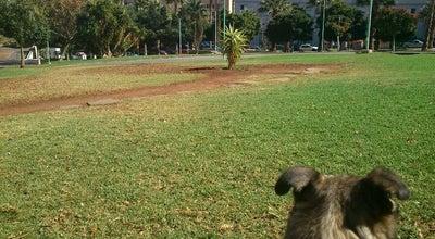 Photo of Park Parque Las Indias at Calle Leopoldo De La Rosa Olivera, Santa Cruz de Tenerife 38008, Spain
