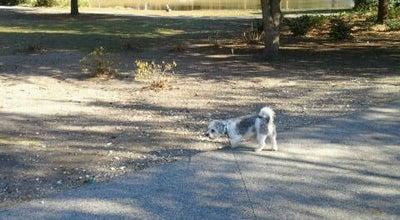 Photo of Playground Duck Pond at North Charleston, SC 29405, United States
