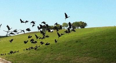Photo of Park Vista View Park at 4001 Sw 142nd Ave, Davie, FL 33330, United States
